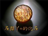網誌用的圖片:DSCN0059~1.jpg