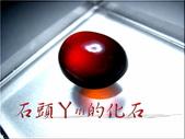 :DSCN1038~1.jpg
