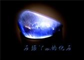 網誌用的圖片:DSCN0970~1.jpg