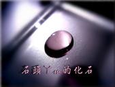 網誌用的圖片:DSCN1132~1.jpg