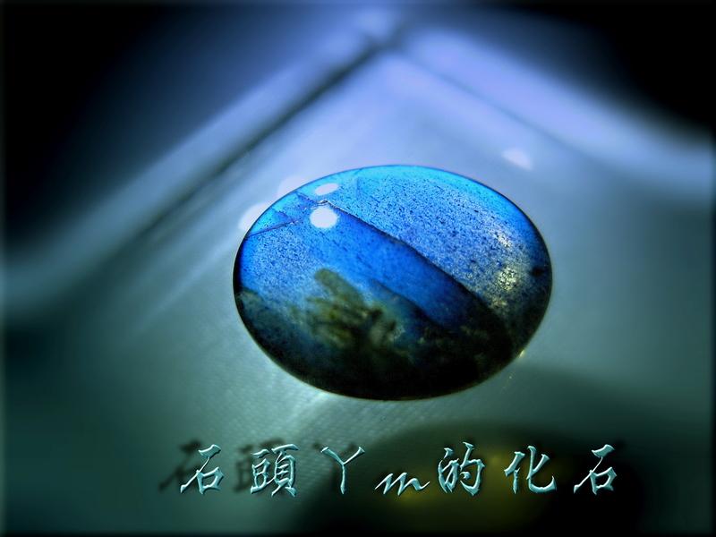 網誌用的圖片:DSCN1165~2.jpg