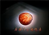 網誌用的圖片:DSCN1120~1.jpg