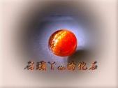 網誌用的圖片:DSCN1105~1.jpg