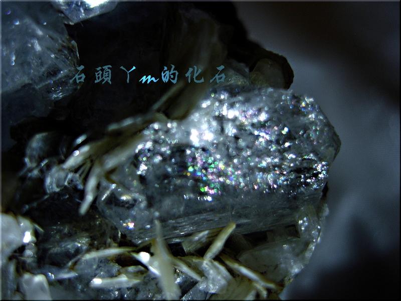 網誌用的圖片:DSCN0586~4.jpg