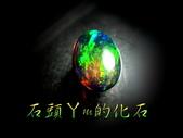 網誌用的圖片:DSCN0597~1.jpg