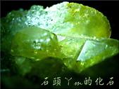 網誌用的圖片:DSCN0891~1.jpg