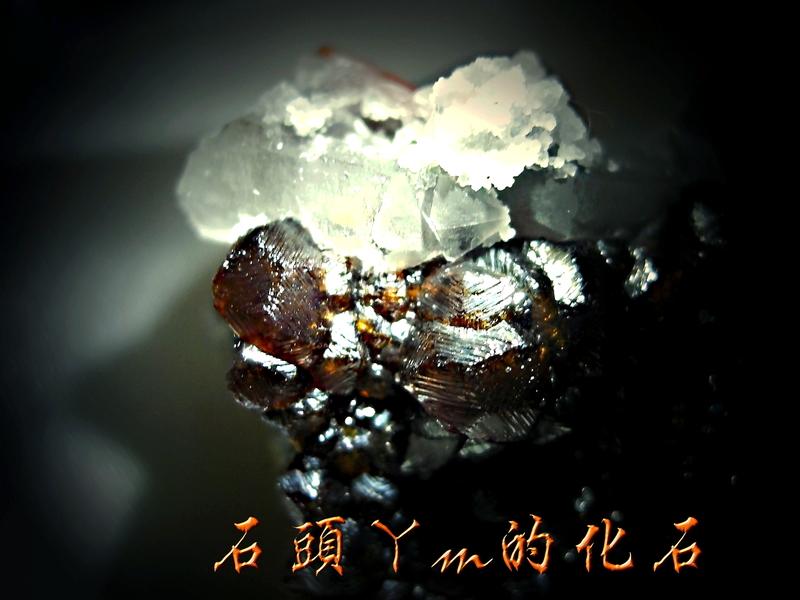 網誌用的圖片:DSCN0956~2.jpg