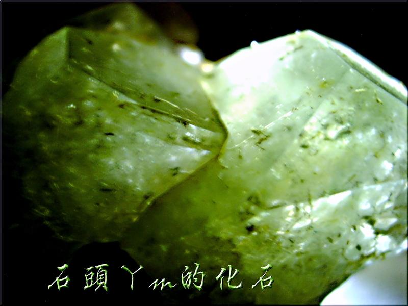 網誌用的圖片:DSCN0901~1.jpg
