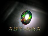 網誌用的圖片:DSCN0585~1.jpg