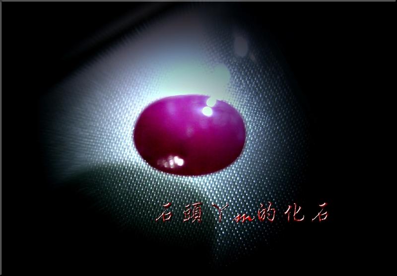 網誌用的圖片:DSCN0627~1.jpg