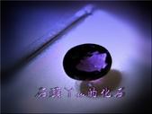 網誌用的圖片:DSCN1537~1.jpg