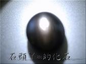 :DSCN0779~1.jpg