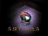 網誌用的圖片:DSCN0579~1.jpg