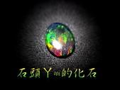 網誌用的圖片:DSCN0600~1.jpg
