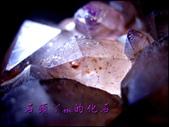 網誌用的圖片:DSCN1597~1.jpg