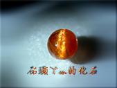 網誌用的圖片:DSCN1100~3.jpg