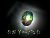 網誌用的圖片:DSCN0585~2.jpg