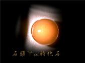 網誌用的圖片:DSCN0866~1.jpg