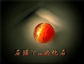 網誌用的圖片:DSCN1115~1.jpg