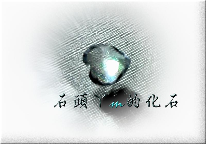 網誌用的圖片:18~1.jpg