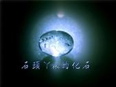 網誌用的圖片:DSCN1068~1.jpg