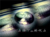 網誌用的圖片:DSCN1269~1.jpg