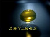 網誌用的圖片:DSCN1481~2.jpg