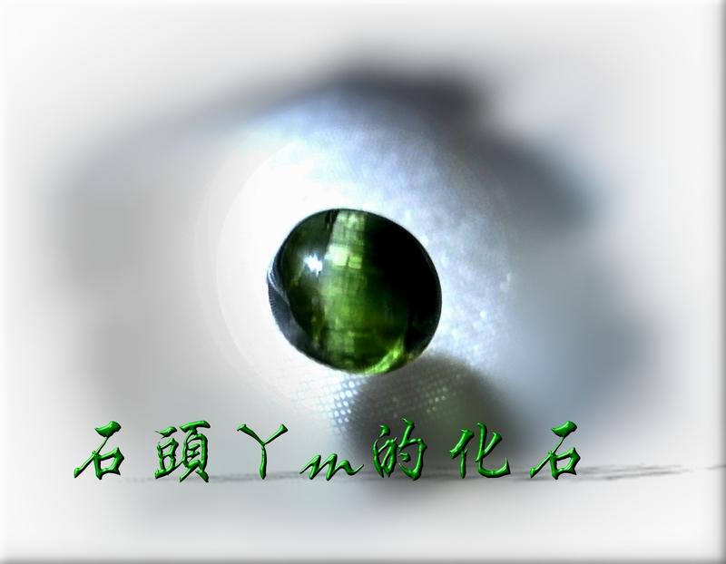 網誌用的圖片:DSCN1315~1.jpg