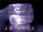 網誌用的圖片:DSCN1296~2.jpg