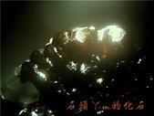 網誌用的圖片:DSCN0931~1.jpg