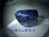 網誌用的圖片:DSCN1640~1.jpg