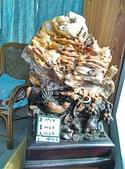 樹化玉拍賣:2385.jpg