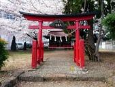 日本東北賞櫻:日本東北-027.jpg