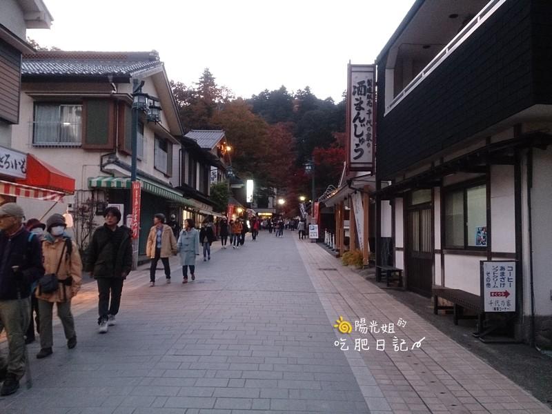 JR PASS 遊日本:JRPASS-025.jpg