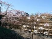 日本東北賞櫻:日本東北-048.jpg