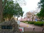 日本東北賞櫻:日本東北-001.jpg