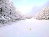 滑雪懶人包:滑雪022.jpg