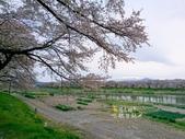 日本東北賞櫻:日本東北-004.jpg