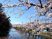 日本東北賞櫻:日本東北-045.jpg