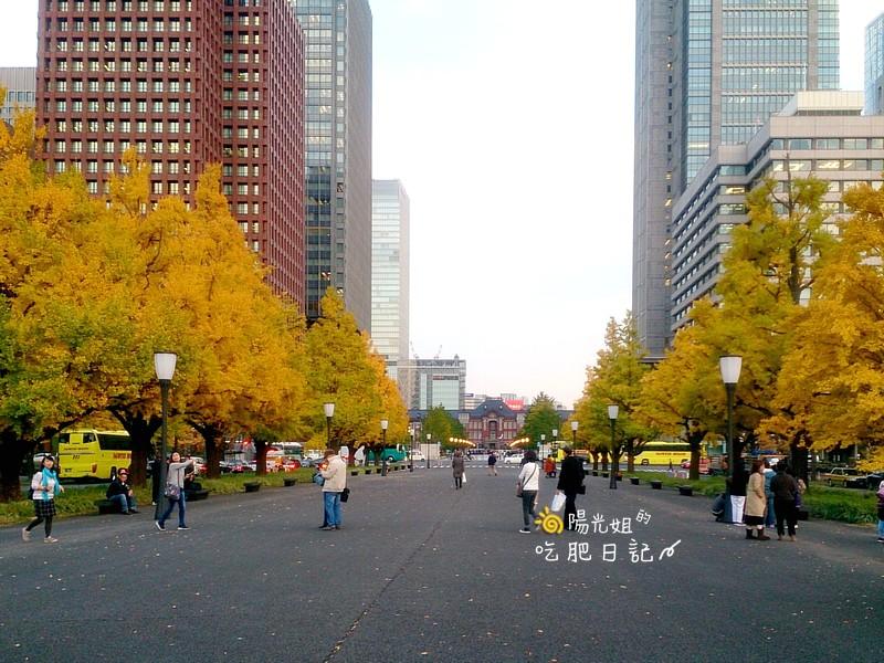 JR PASS 遊日本:tokyo002.jpg