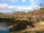 岡山倉敷:岡山倉敷020.jpg