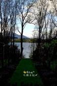 紐西蘭南島之旅:紐西蘭006.jpg