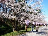 日本東北賞櫻:日本東北-044.jpg
