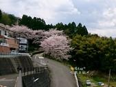 日本東北賞櫻:日本東北-012.jpg