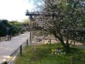 岡山倉敷:岡山倉敷019.jpg
