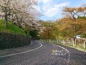 日本東北賞櫻:日本東北-018.jpg