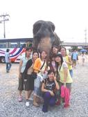 高中畢業的暑假 我們去了泰國玩:1131425549.jpg