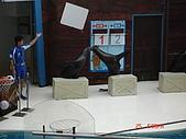 2009.04.24~27台北高峰會(一):0269.JPG