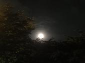 2016.08.08-混合檔照片:草莓月亮-0005.JPG