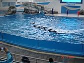 2009.04.24~27台北高峰會(一):0274.JPG